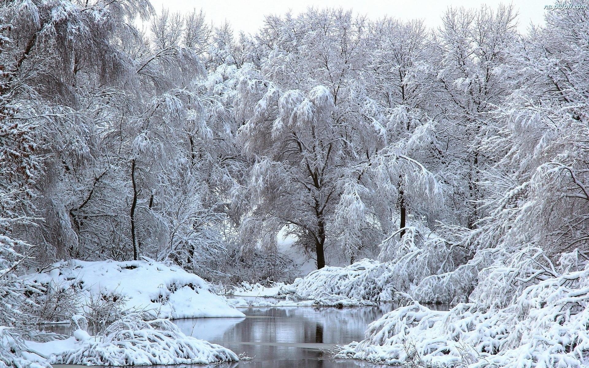 Красивые фото зима в городе